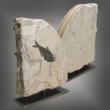 Fossil Sculptures