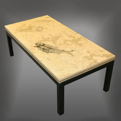 Fossil Tables