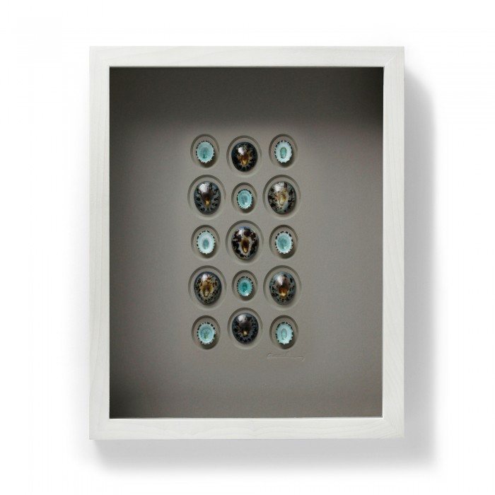 11 x 14 Limpets 1