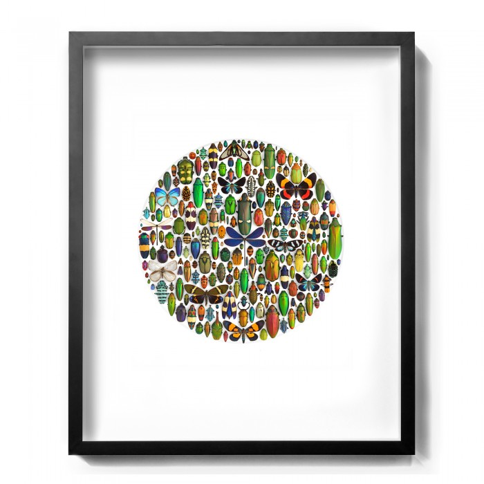 24 x 30 Limited Aesthetica Sphere 1