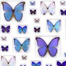 40 x 30 Cerulean Butterflies 2