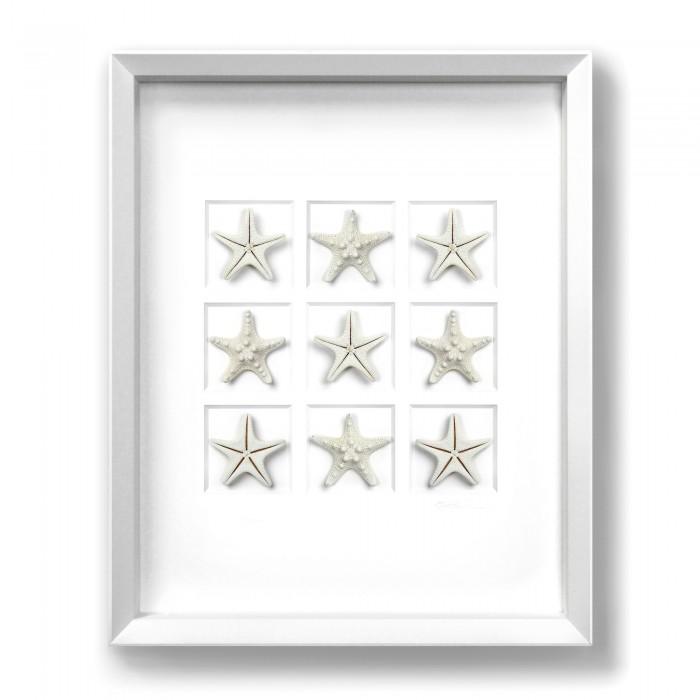 16 x 20 Achromic Starfish 1