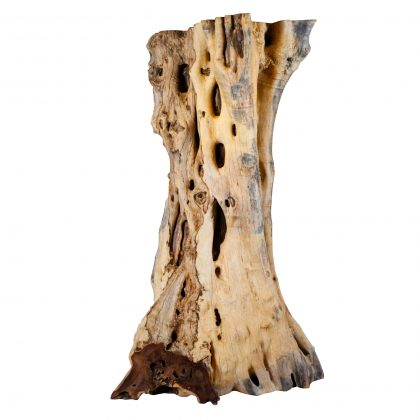 Matarraton Natural Wood Art - MT1