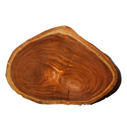 Saman Natural Wood Art - R11