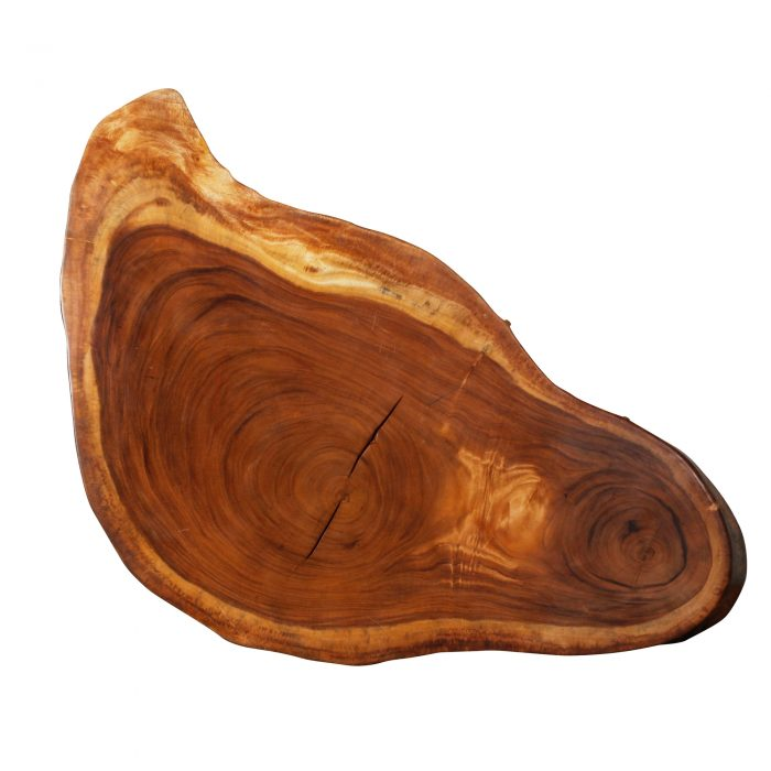 Saman Natural Wood Art – R27 1