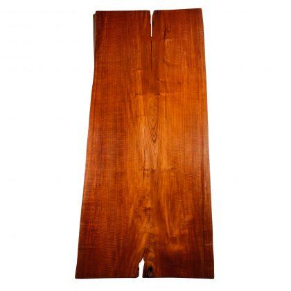 Red Cedar Saman Natural Wood Art - TM8