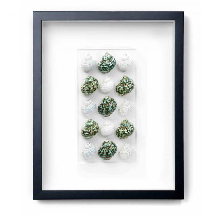 16×20 Jade Turbos 1