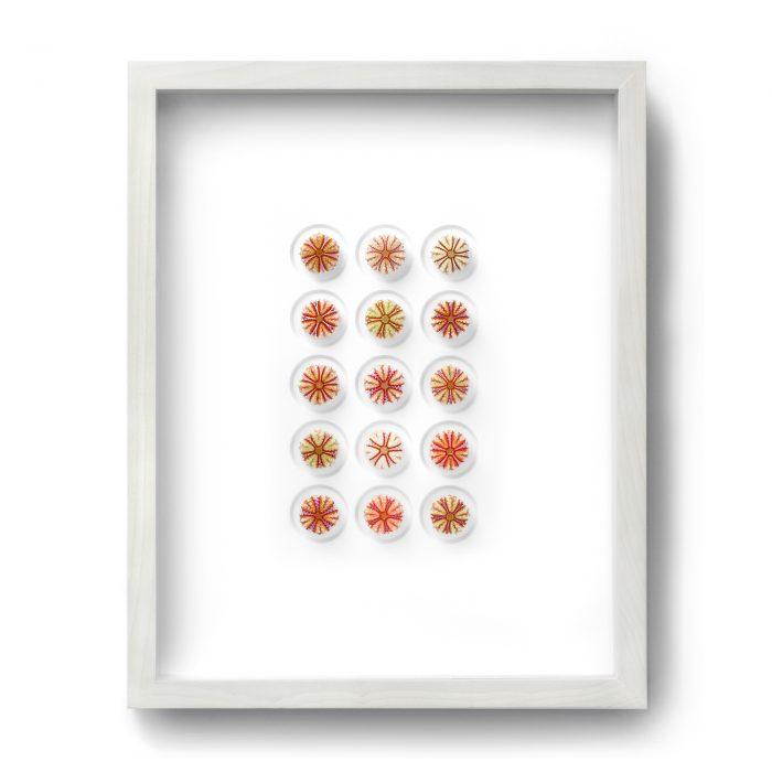 16×20 Variegated Urchins 1