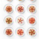 16×20 Variegated Urchins 2