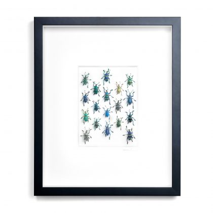 16x20 Walking Weevils