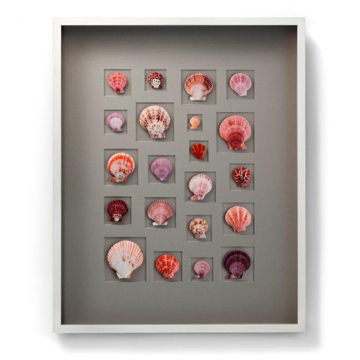 24×30 Select Scallop Mosaic (Berry) 1