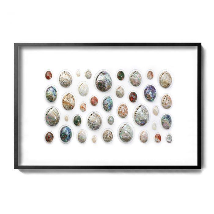 60×40 Abalone Mosaic 1
