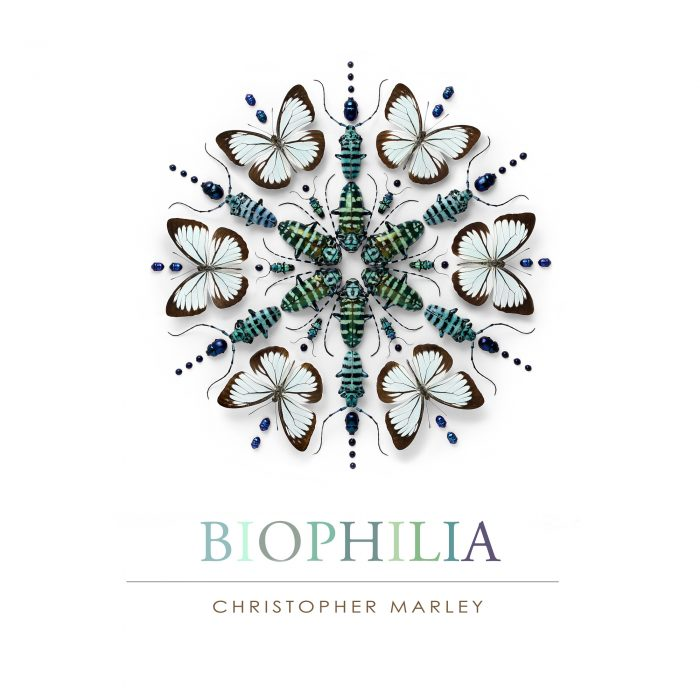 Book – Biophilia 1