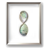 16 x 20 Silver Abalone Duo