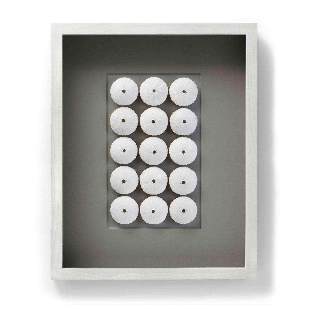 16 x 20 White Urchin Spheres