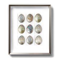 24 x 30 Pastel Abalone Mosaic Framed Pheromone