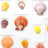 24 x 30 Select Scallop Mosaic 2