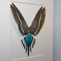 14 x 18 Shell Parakeet Bird – Light blue and grey 2