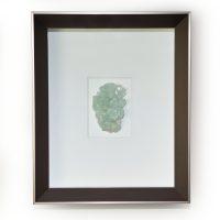 8 x 10 Apophyllite - Green coloration