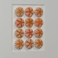 11 x 14 Lilac Urchins 2