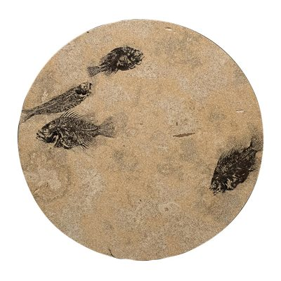 Fossil Stone Drink Table (Round) 170213362t